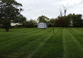 <p>Revitalize your lawn without the use of any harsh chemicals with our organic and synthetic lawn care service. </p>