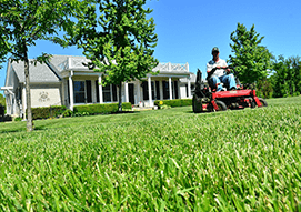 <p>We provide a variety of services to maintain a strong and healthy lawn, such as: seeding, aeration, fertilization, lawn mowing, and leaf clean up.</p>